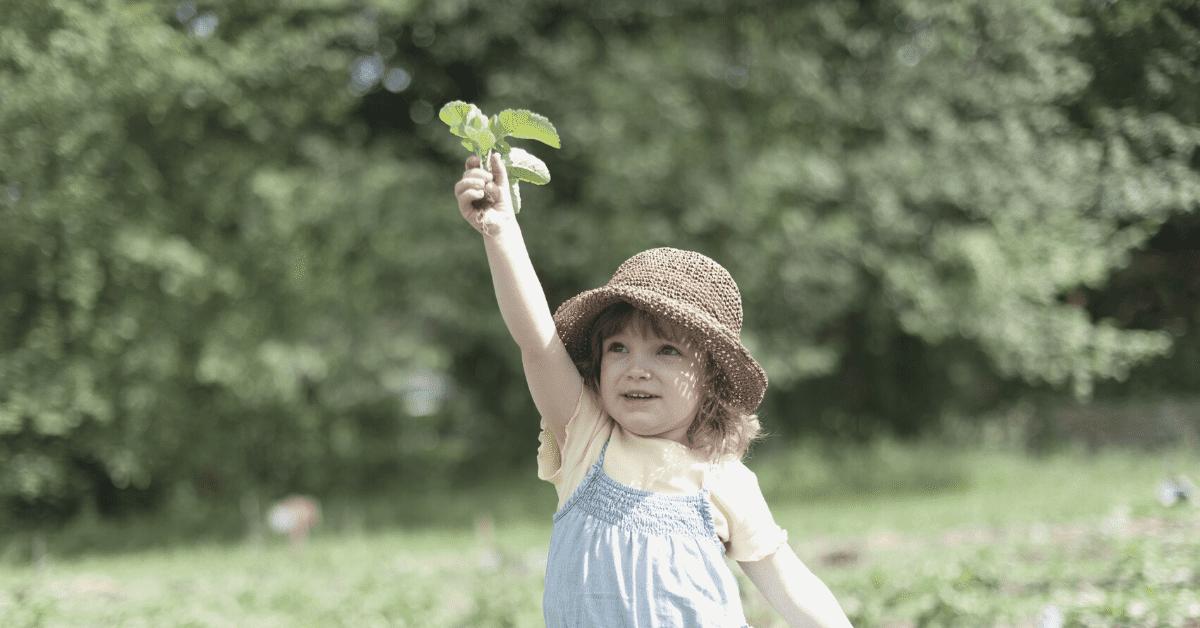 child holding herbs in garden