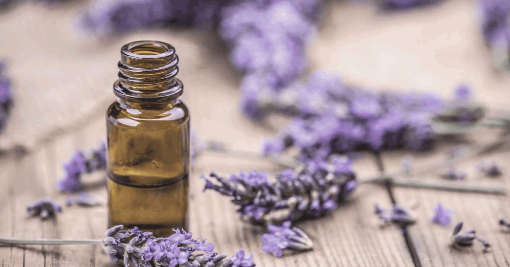 jar of lavender oil